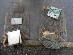 Cages détériorées de la Ville de Betton & de la FFGDON35