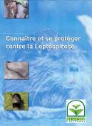 Ragondin leptospirose 1