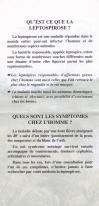 Ragondin leptospirose page 1